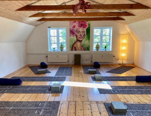Sommer yoga i Lejre – morgenyoga hele ugen