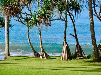 Alila Ubud Spa Resort er i absolut særklasse